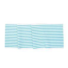 Ticking Stripe Turquoise Runr