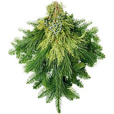 Van Zyverden Fresh Cut Pacific Northwest Evergreen Mixed Holiday Bunch