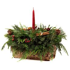 Van Zyverden Live Fresh Cut Birch Log Centerpiece with Candle