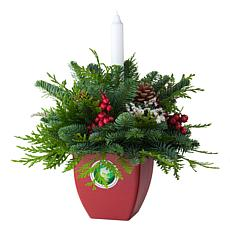 Van Zyverden Live Fresh Cut GoGreener Centerpiece w/Candle