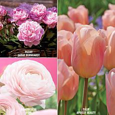 VanZyverden Color Your Garden Pink Collection 40-piece Bulb Set