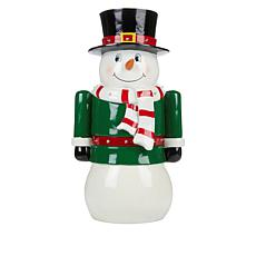 "Wind & Weather 18"" Lighted Christmas Figure"