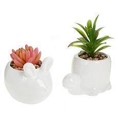 Wind and Weather Set of 2 Animal Faux Succulent Planters