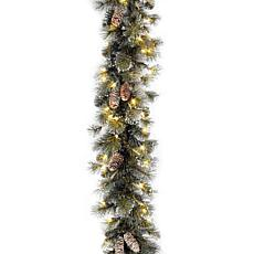 Winter Lane 2' Glittery Pine Garland w/Lights
