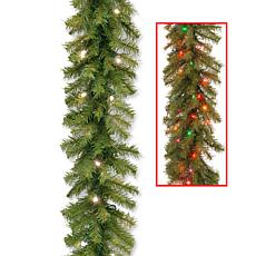 "Winter Lane 24"" Norwood Fir Garland w/Dual-Color LEDs"