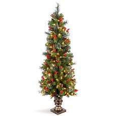 Winter Lane 5'  Crestwood Spruce Entrance Tree w/Lights