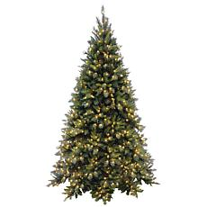 Winter Lane 7-1/2' Tiffany Fir Medium Tree w/Lights