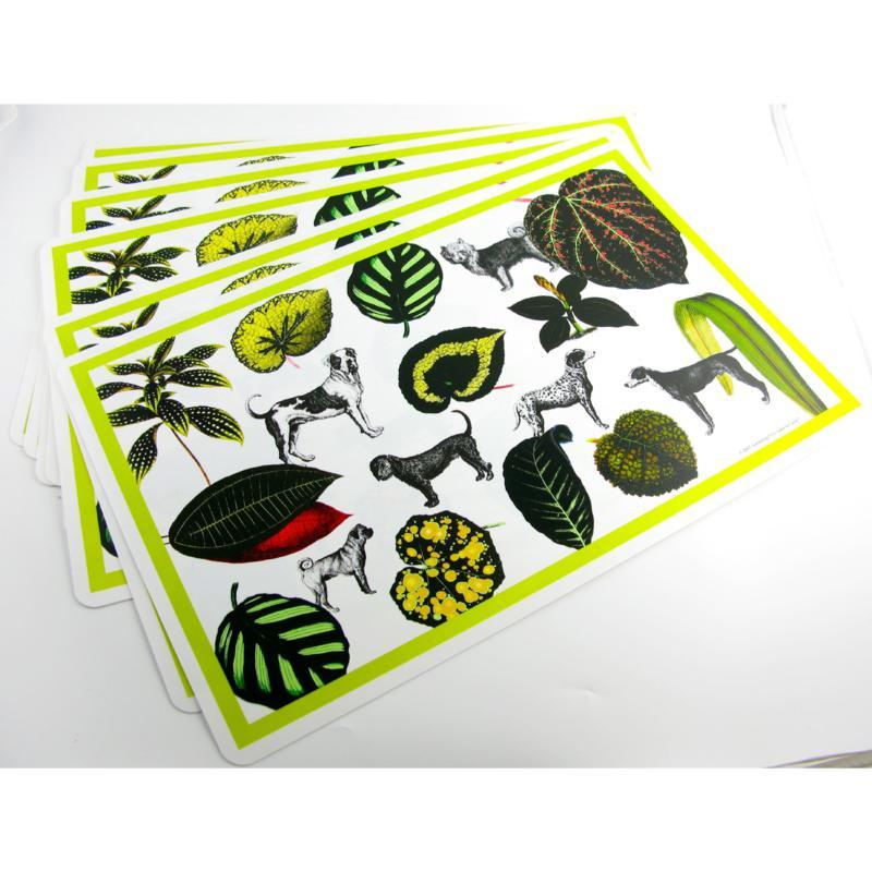 Isabella Cane 8-piece Indoor/Outdoor Placemat Set