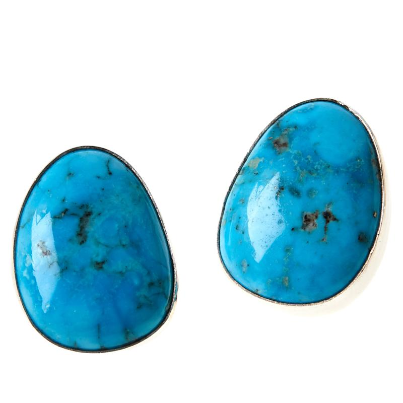 Jay King Sterling Silver Freeform White Cloud Turquoise Earrings