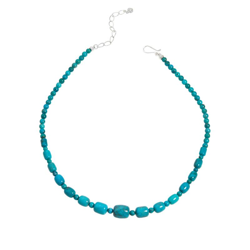 Jay King Sterling Silver Turquoise Hill Turquoise Bead Necklace