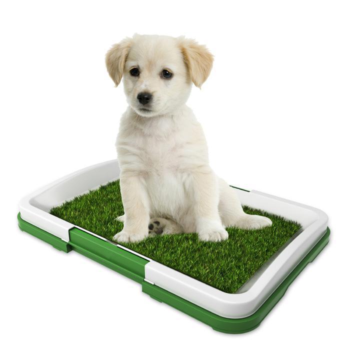 Pet Adobe Puppy Artificial Grass Potty Trainer Mat
