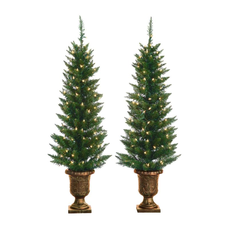 Sterling 4' Potted Cedar Pine Lighted Christmas Trees